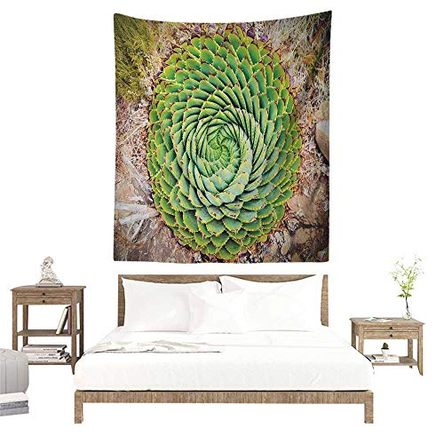 Willsd Plant Tapestry Hippie National Flower of Lesotho South of Africa Aloe Polyphylla Spinning Spiral Aloe Vera Living Room Background Decorative Painting 60W x 91L INCH Multicolor