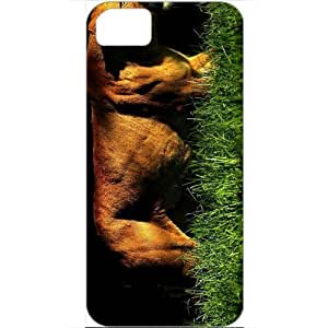DIY Apple iPhone 5S Case Customized Gifts Personalized With Animals animals lioness 16807 White