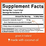 Astaxanthin 12mg with Organic Coconut Oil for