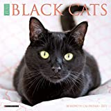 Just Black Cats 2021 Mini Wall Calendar