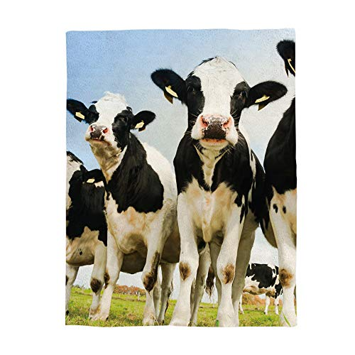 Cow Blanket - Cloud Dream Home Flannel Blanket,Cow Farm Decor Throw Luxury Blanket Reversible Fuzzy Microfiber All Season Blanket for Child and Adults Blue White Black 40