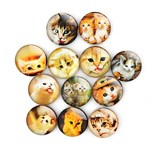 Kitten Cat Refrigerator Magnet Party Set of 12 Pack 3D Round Face For Silver Fridge Office Dry Erase Board Stainless Steel Door Freezer Whiteboard Cabinet Magnetic Great Fun for Adult Girl Boy Kid