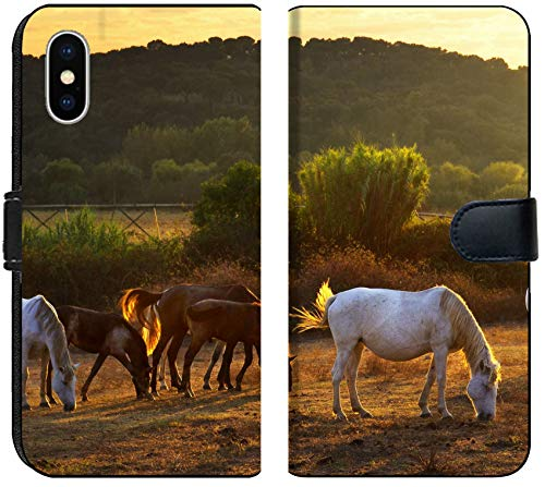 Apple iPhone Xs MAX Flip Fabric Wallet Case Image ID: 10987653 White and Brown Horses pasturing in The Countryside at Sunset