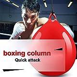 Doro0 Water Heavy Bag,Boxing Column,for