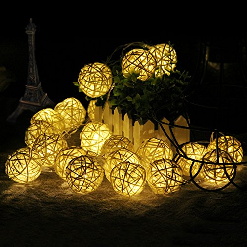 FOU Globe String Lights Battery Operated 5Ft 10