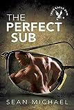 The Perfect Sub (Iron Eagle Gym Book 2)