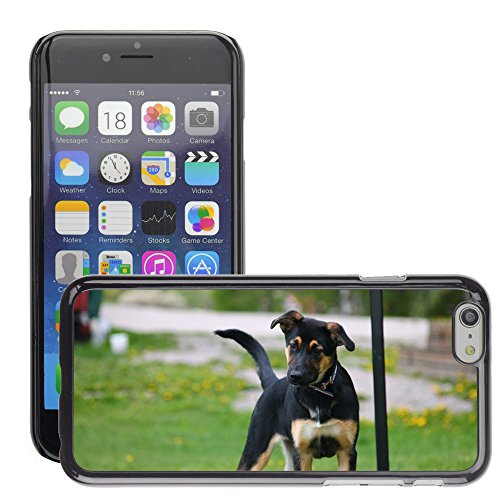 """Bild Hart Handy Schwarz Schutz Case Cover Schale Etui // M00135316 Dog Agility Puppy // Apple iPhone 6 PLUS 5.5"""""""