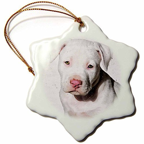 Christmas Craft Tree Decorations American Staffordshire Terrier Pit Bull Puppy Watercolor Snowflake Christmas Ornament Porcelain Present