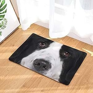 Amazon.com: YQ Park - Felpudo para puerta de perro, diseño ...