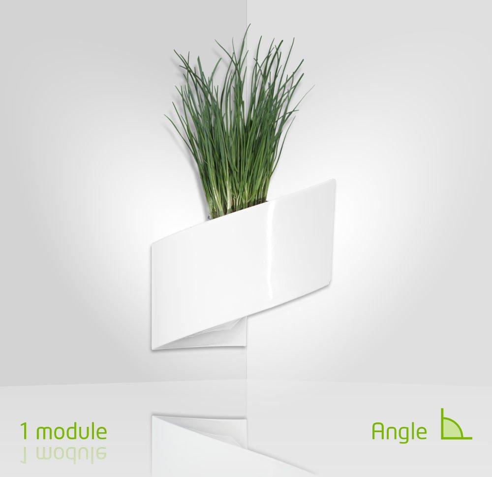plante murale intrieur belle support pour planteseur pot mural plante interieur nouveau tier. Black Bedroom Furniture Sets. Home Design Ideas
