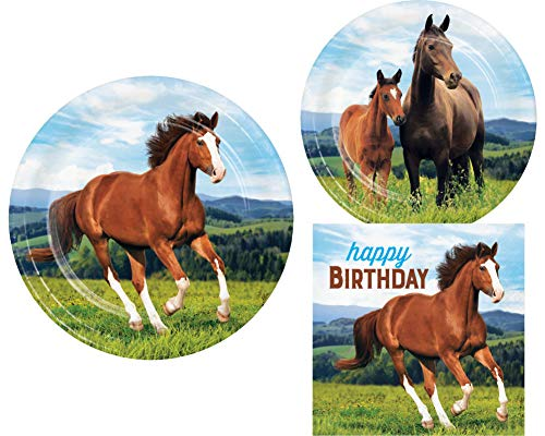 Wild Horses Birthday Party Supplies in a Horse and Pony Design (16 Guests Happy Birthday)]()