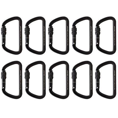 Fusion Climb Tahoe Steel Screw Lock Key Nose Straight D-shape Carabiner 10-Pack (Key Lock Straight Gate)