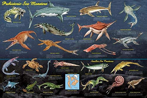 sea chart poster - 9