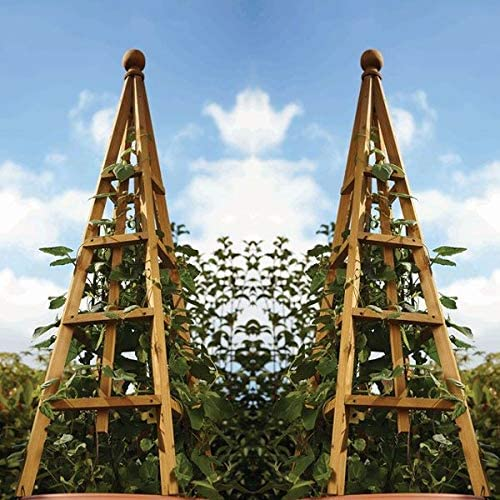 Smart Garden - 2 pérgola de Madera de Pino de 1, 9 m: Amazon.es: Jardín
