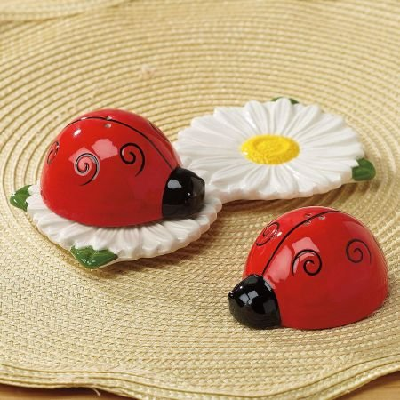 (Ceramic Ladybug and Daisy Salt and Pepper Shakers)