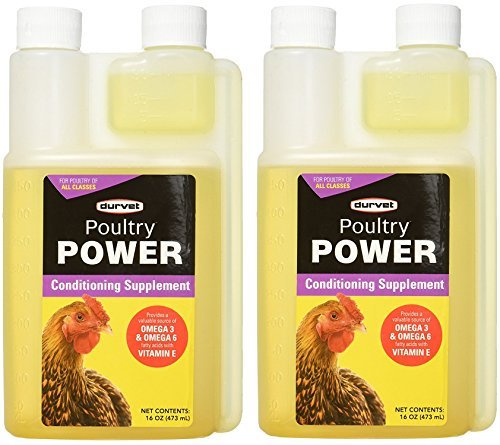 DURVET 698934 Poultry Power Conditioning Supplement 32 oz