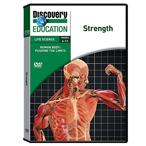 Discovery Education Human Body: Pushing The Limits: Brain Power DVD