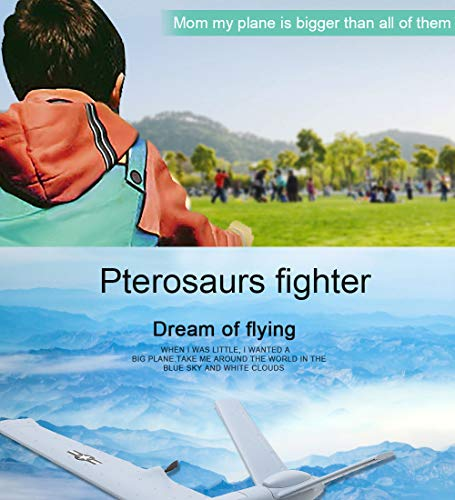 Studyset Flying Model Gliders RC Plane 2.4G 2CH Predator Z51 Remote Control RC Airplane Wingspan Foam Hand Throwing Glider Toy Planes by Studyset (Image #3)