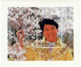 Jackie Chan martial arts Hollywood star stamp sheet for collectors - 1 stamp sheet / MNH