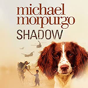 Shadow Audiobook