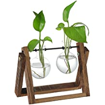 Decorative Clear Glass Planter Bulb Vases with Rustic Wood & Metal Swivel Holder Stand