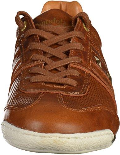 Pantofola dOro Sneaker Uomo tortoise shell (10181021.JCU)