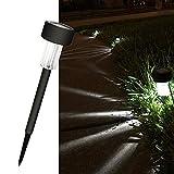 Cellay Solar Powered LED Garden Lights [ 10 Pack ] Perfect White Light Design, Garden Pathways Landscape Night Lighting