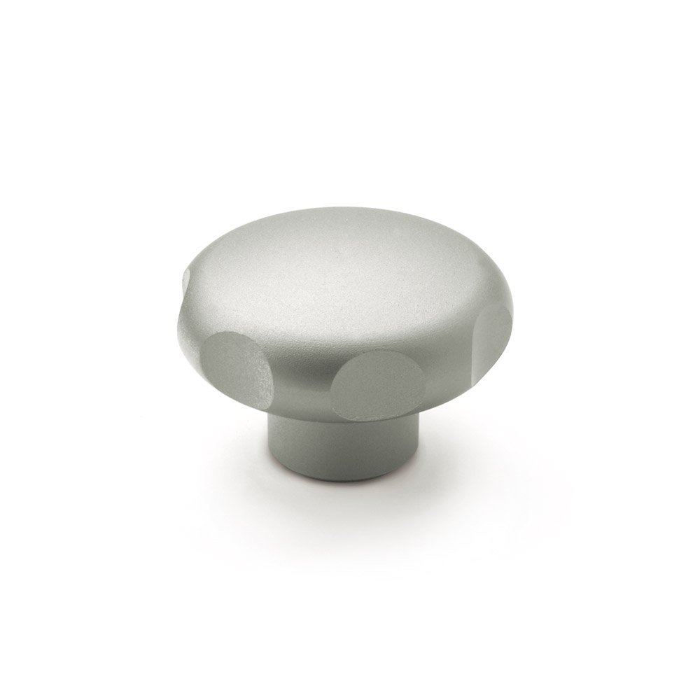 JW Winco Type A Stainless Steel 303 Blank Hand Knob, Solid Hub, 60mm Head Diameter x 39mm Length (Pack of 1)