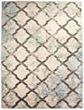Super Area Rugs 3 x 5 Modern/Traditional Vintage Distressed Area Rug for Living Rooms and Open Spaces Overdyed Ivory