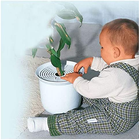 blanco Rejilla de protecci/ón para plantas Yinong-eu Juego de 3 separadores