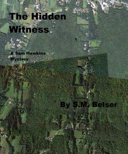 The Hidden Witness (Sam Hawkins Book 1)
