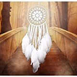 WCHUANG Feather Hanging Decor, Dream Catcher Ornament for Wall and Car, Christmas Gift (6602)