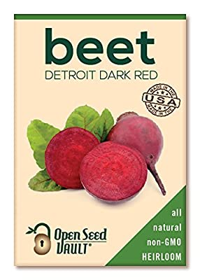 Open Seed Vault's - Detroit Dark Red Beet Seeds - 180 Seeds!