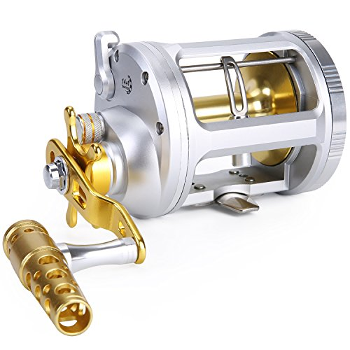 (One Bass Fishing Reels Level Wind Trolling Reel Conventional Jigging Reel for Saltwater Big Game Fishing-(TA5000 Silver-Gold-Right)