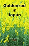 Goldenrod in Japan: A Beautiful Yellow Flower Blooming in Japan