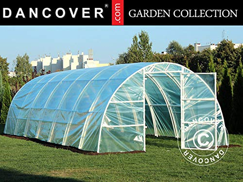 Dancover Polytunnel Greenhouse 3x8.4x1.9 m, 25.2 m², Transparent