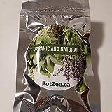 Lavender Organic Herbal Smoking Blend, Smoking Mix, Herbal Mixtures, 100% Natural, Nicotine Free, Tobacco Alternative, Smoking Herbs - 0.5oz Pouch