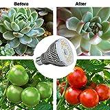 SGLEDS Grow Light Bulb with Ceramic Technology, PPF