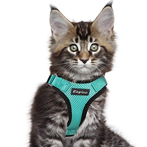 - Eagloo Cat Harness Escape Proof Small Cat and Dog Harness Soft Mesh Harness Adjustable Cat Vest Harness with Reflective Strap Metal Clip Cat Walking Jacket Comfort Fit for Kitten Puppy Green Small