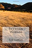 Between Worlds, Bob Stidham, 146363112X