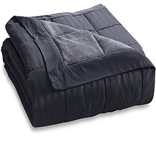 Price comparison product image JBFF 250 Thread Microfiber Reverse to Fleece Goose Down Alternative Blanket, King, Black