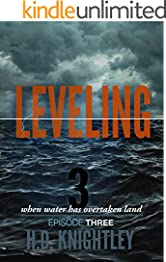 Leveling 3: The Storm (The Leveling Series)