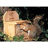 4 Lb Capacity Chuckanut Combo Squirrel Feeder