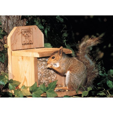 4 Lb Capacity Chuckanut Combo Squirrel Feeder by Chuck-A-Nut