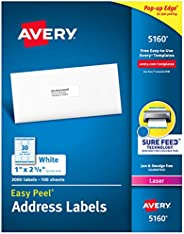 Avery 5160 Easy Peel Address Labels , White, 1 x 2-5/8 Inch, 3,000 Count (Pack of 1)
