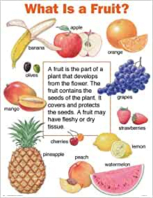 What is a Fruit? (Cheap Charts): School Specialty