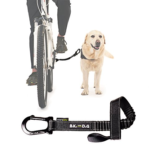 Dog Bike Leash Designed Bicycle