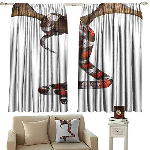 Windshield Curtain Reptile Wild Milk Snake Enjoying Life Creepy Creature Stylish Nature Studio Artful Photo Toxic Print Multi Light Blocking Drapes with Liner W120 xL72 (Difference Between Coral Snake And Milk Snake)