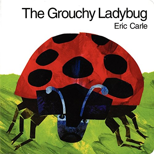 Spider Very Busy - The Grouchy Ladybug