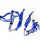 Uniquorn 2017 New Fashion Reflective Backstroke Traction Rope Riding Dog Strap + Traction Rope